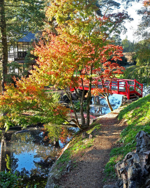 Photograph - Tranquility - Japanese Garden In Autumn Vertical by Gill Billington