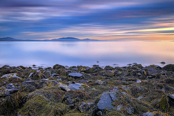 Photograph - Tranquility On Penobscot Bay by Rick Berk