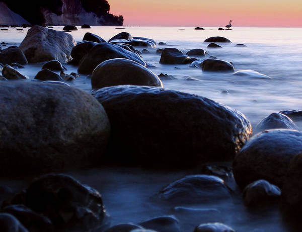 Wall Art - Photograph - Tranquility by Wingmar