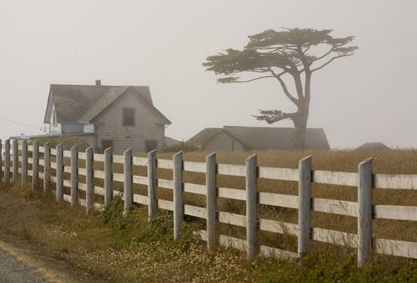 Fort Bragg Photograph - Travel Destination The Mendocino Coast by George Rose