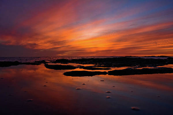 Photograph - Treasure Island Beach Reflections by Kyle Hanson