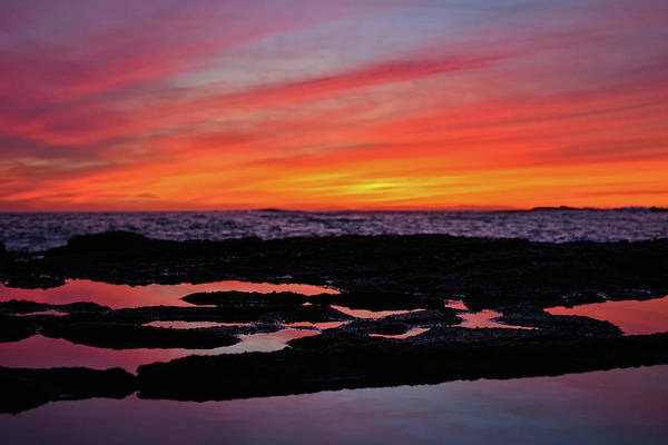 Photograph - Treasure Island Coastal Sunset by Kyle Hanson