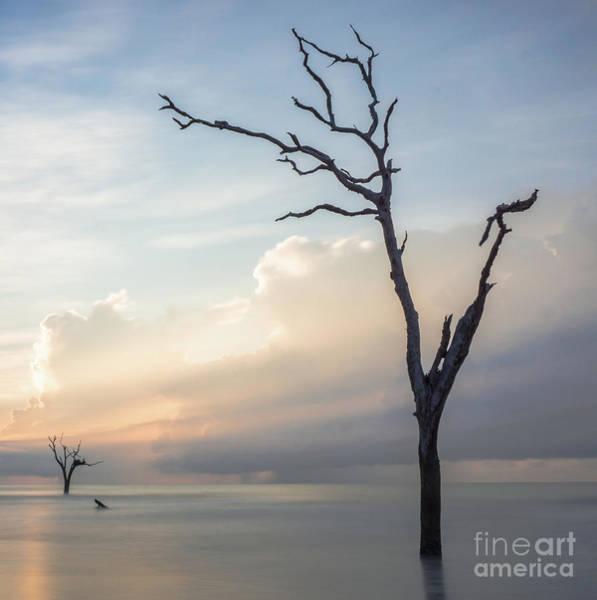 Bulls Island Photograph - Beacons by DiFigiano Photography