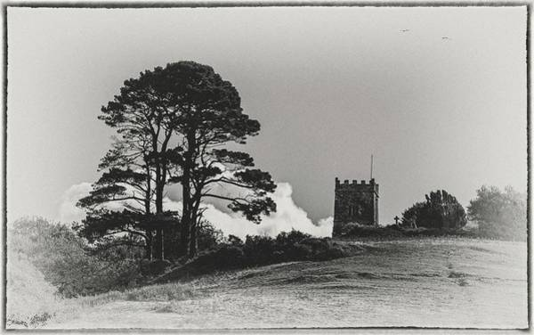 Wall Art - Photograph - Tree And Tower by Andrew Wilson