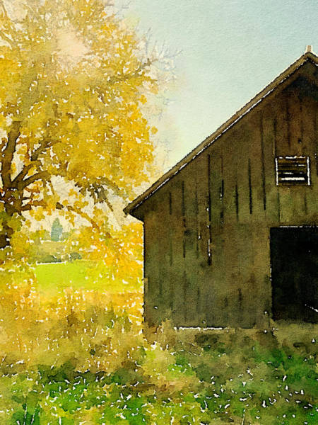 Wall Art - Photograph - Tree By The Barn by Bonnie Bruno