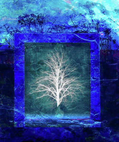 Digital Illustration Digital Art - Tree In Blue Frame by Mike Moran