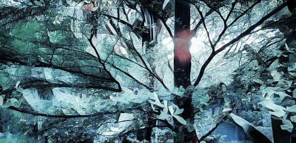 Tree Of Glass Art Print