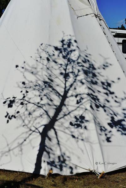 Mixed Media - Tree Shadow On Teepee by Kae Cheatham