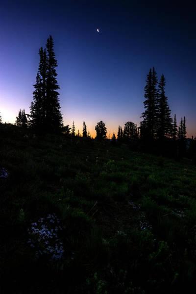 Wall Art - Photograph - Tree Silhouette Sunrise 2 by Pelo Blanco Photo