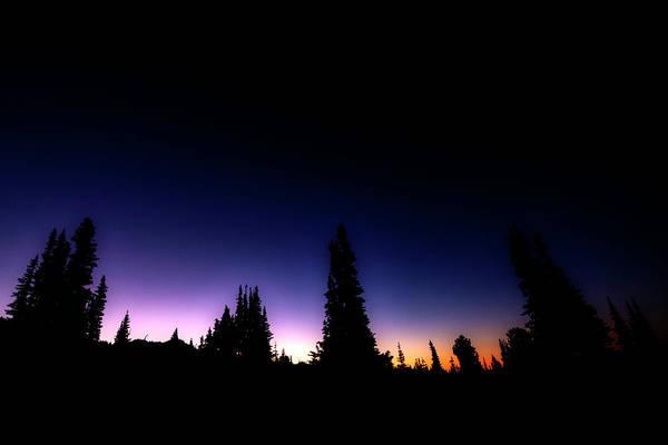 Wall Art - Photograph - Tree Silhouette Sunrise by Pelo Blanco Photo