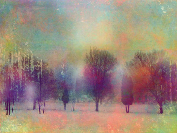 Photograph - Tree Spirits In The Fog by Tara Turner