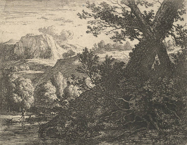 Relief - Tree With Roots Laid Bare Alongside A Stream by Karel Dujardin