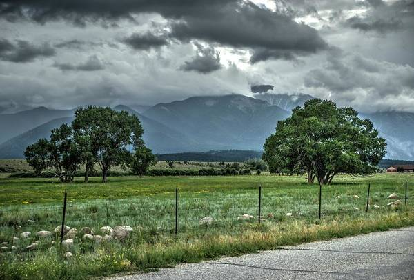 Photograph - Trees And Mountains by Dimitry Papkov