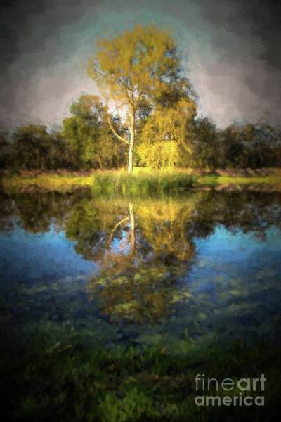 Wall Art - Digital Art - Trees And Pond by Patricia Hofmeester