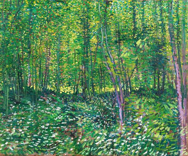 Felicitous Wall Art - Painting - Trees And Undergrowth - Digital Remastered Edition by Vincent van Gogh