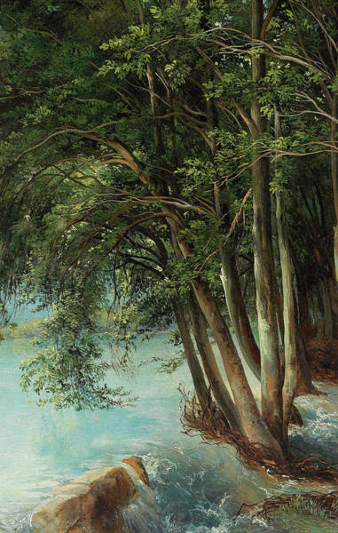 Wall Art - Painting - Trees By The Riverbank by Friedrich Salathe