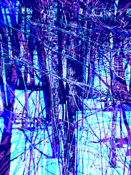Quebec City Digital Art - Trees In Abstract by Shelly Wiseberg