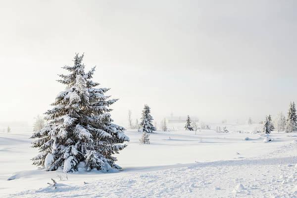 Lillehammer Photograph - Trees In Snow Landscape,church In Misty by Betsie Van Der Meer