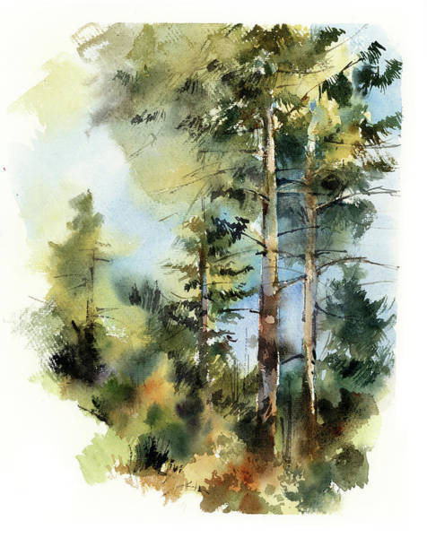 Wall Art - Painting - Trees In The Forest by Sophia Rodionov