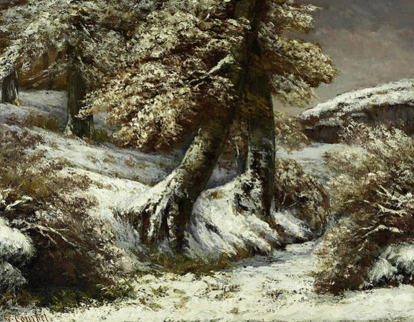Wall Art - Painting - Trees In The Snow, 1865 by Gustave Courbet