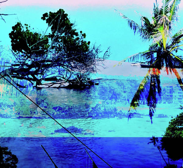 Wall Art - Photograph - Trees Of Fulidhoo Island by Stacy Vosberg
