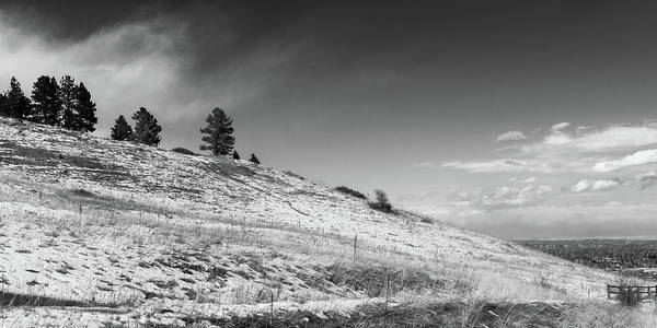 Photograph - Trees On Ridge by Dan Urban