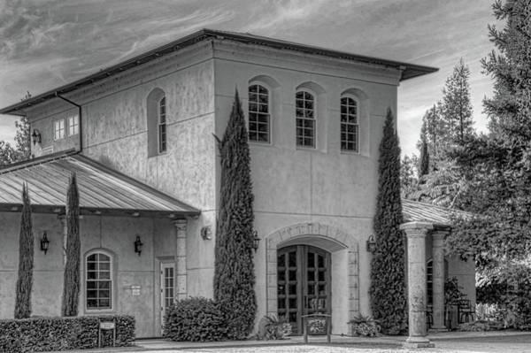 Camera Raw Photograph - Trentadue Winery Monochrome by Brenton Cooper