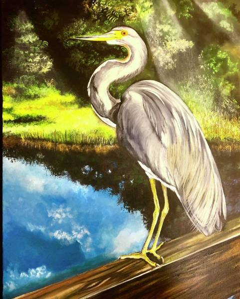 Wall Art - Painting - Tri-color Crane by Andrew Hollimon