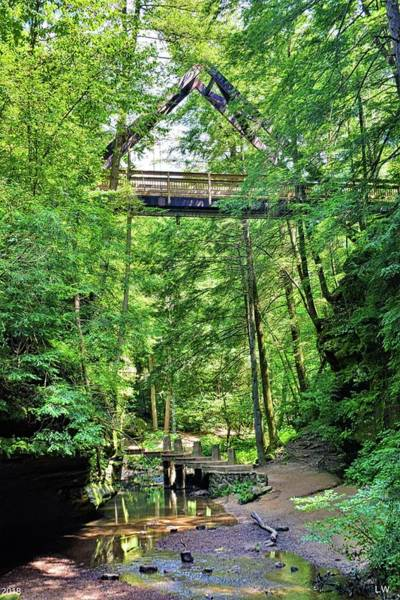 Photograph - Triangle Bridge At Hocking Hills State Park Vertical by Lisa Wooten
