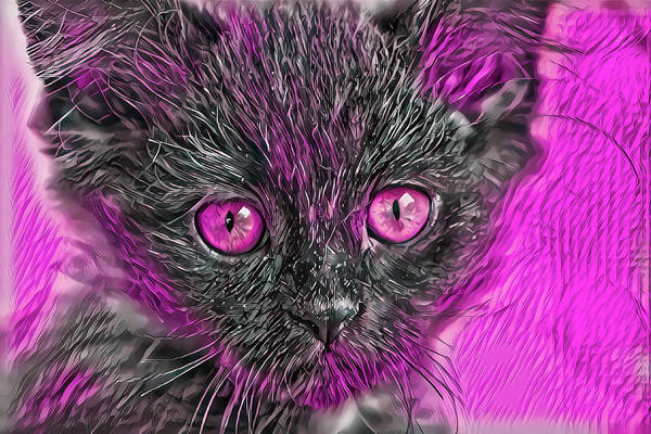Digital Art - Triangle Face Kitten Pink Eyes by Don Northup