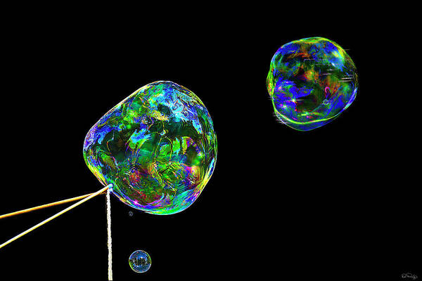 Photograph - Trio Of Bubbles by Dee Browning