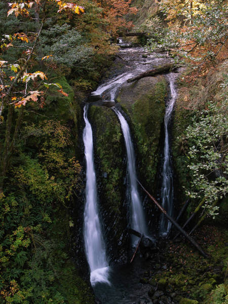 Photograph - Triple Falls  by Steven Clark
