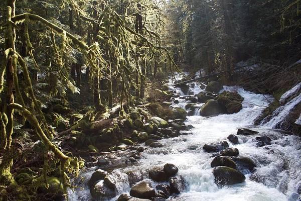 Triple Falls Photograph - Triple Flow by Dylan Punke