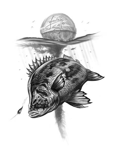 Wall Art - Digital Art - Tripletail On Fly by Yusniel Santos