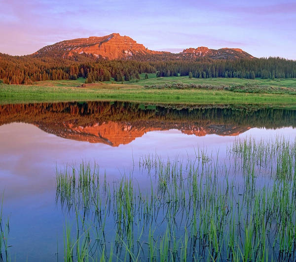 Photograph - Tripod Peak Reflected In Lake, Wyoming by