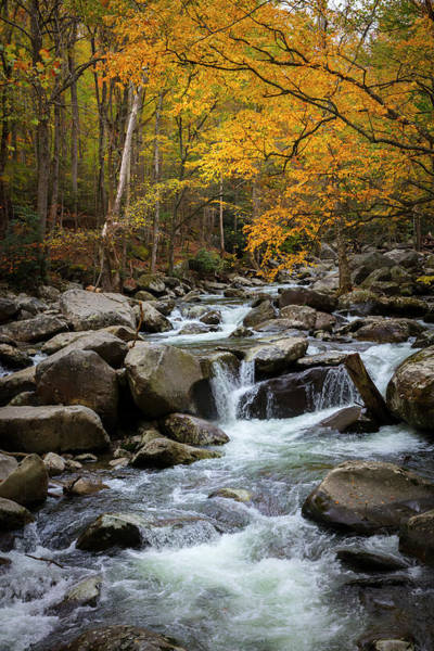 Wall Art - Photograph - Tripping Downstream In Autumn by Debra and Dave Vanderlaan