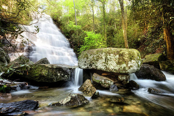 Photograph - Tripping Downstream Over The Rocks by Debra and Dave Vanderlaan