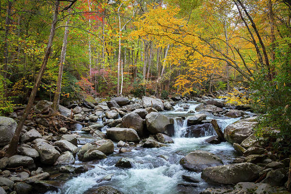 Wall Art - Photograph - Tripping Waters In Autumn by Debra and Dave Vanderlaan