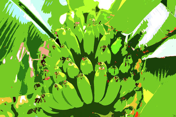 Wall Art - Painting - Tropical Bananas by David Lee Thompson
