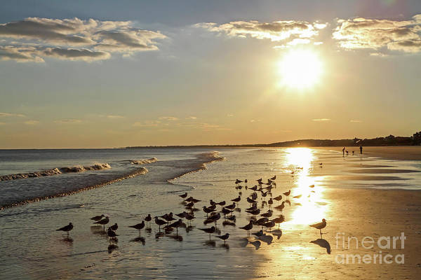 Photograph - Tropical Beach At Sunset by Kevin McCarthy