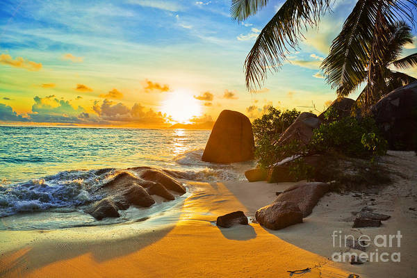 Wall Art - Photograph - Tropical Beach At Sunset - Nature by Tatiana Popova