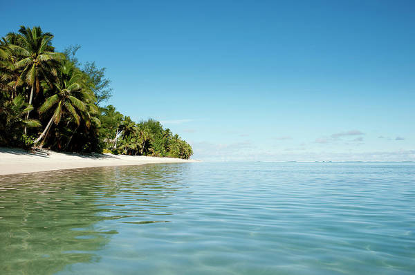 Rarotonga Photograph - Tropical Beach Scene by Devon Strong