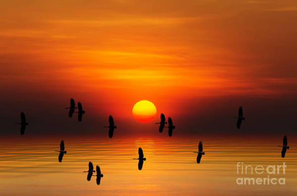 Wall Art - Digital Art - Tropical Colorful Sunset, Songkhla by Siriwat Srinuroht