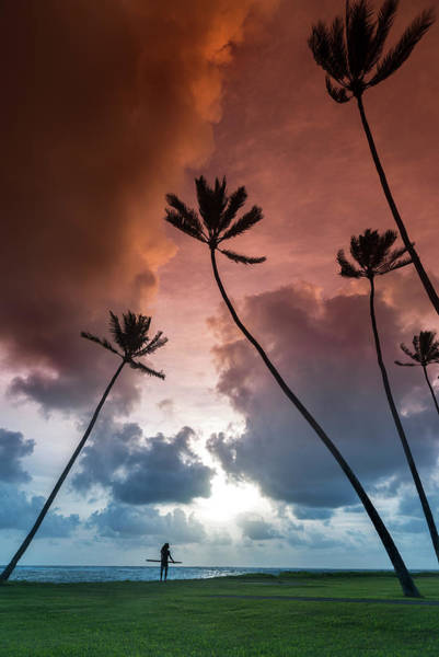 Wall Art - Photograph - Tropical Convergence by Sean Davey