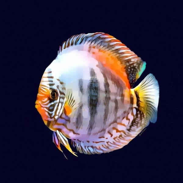 Digital Art - Tropical Discus Portrait by Scott Wallace Digital Designs