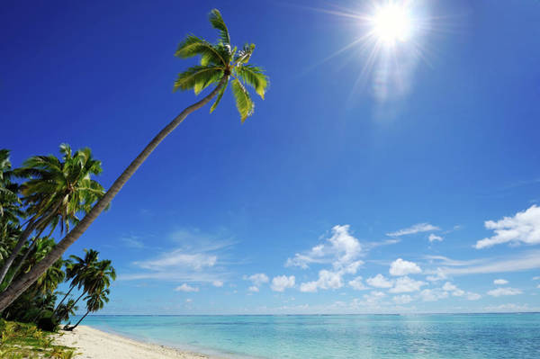 Rarotonga Photograph - Tropical Dream Beach by Freder