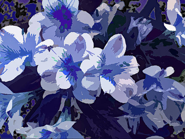 Photograph - Tropical Flowers Blue And White by Corinne Carroll