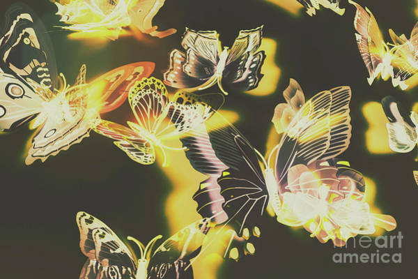Wall Art - Photograph - Tropical Glow by Jorgo Photography - Wall Art Gallery