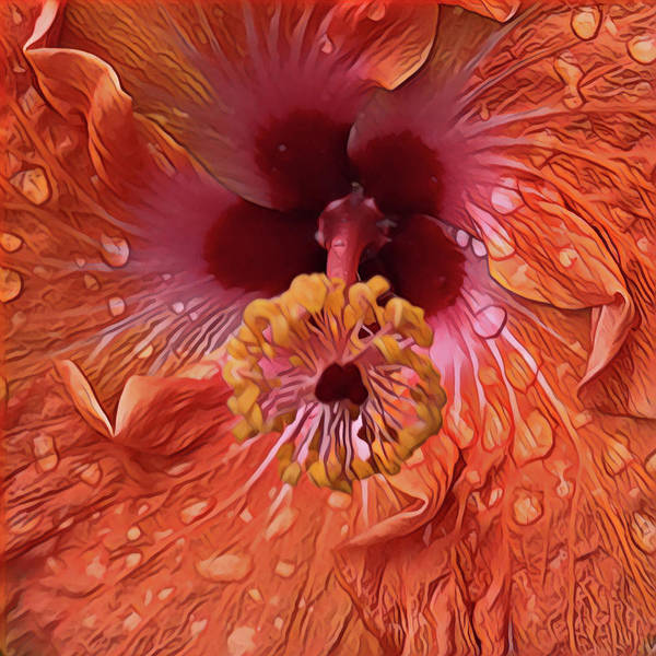 Digital Art - Tropical Hibiscus by Cindy Greenstein