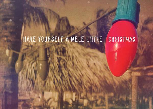 Photograph - Tropical Holiday Quote by JAMART Photography